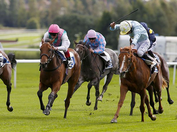 Aim of Artemis Winning Her Maiden