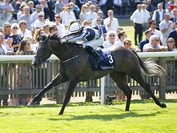 Alpha Centauri Winning the G1 Tattersalls Falmouth Stakes in 2018