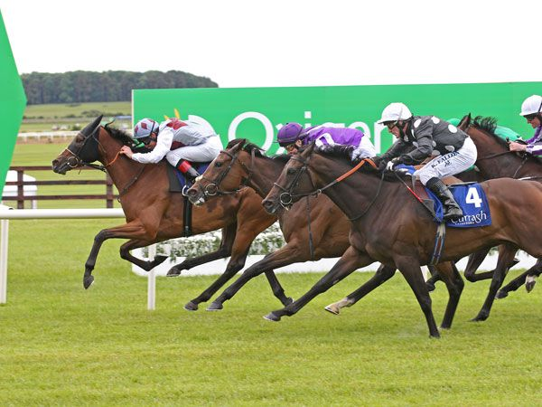 Ambivalent Winning the Group 1 Pretty Polly Stakes
