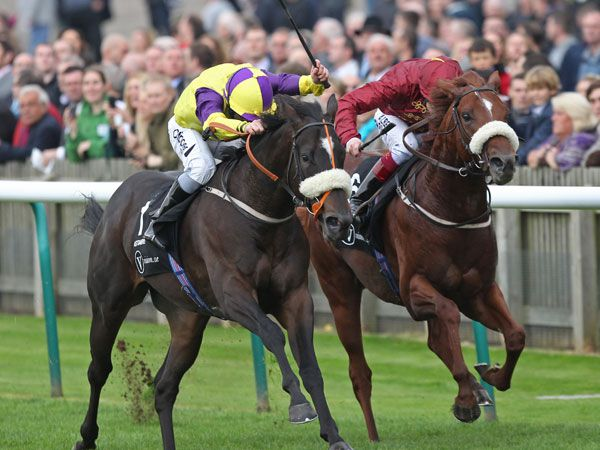 Astaire Beats Hot Streak in the G1 Middle Park Stakes