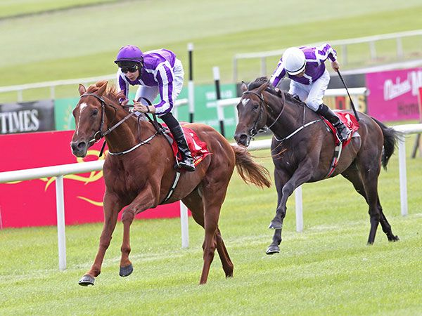 Australia Winning the G1 Irish Derby