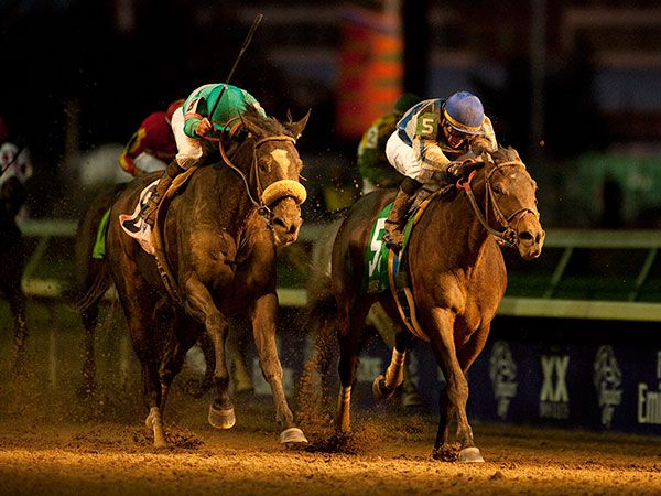 Blame (right) beating ZENYATTA in the Breeders' Cup Classic. (copyright Racing Post)