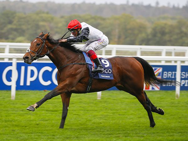 A nomination to Champion racehorse Cracksman will be offered.