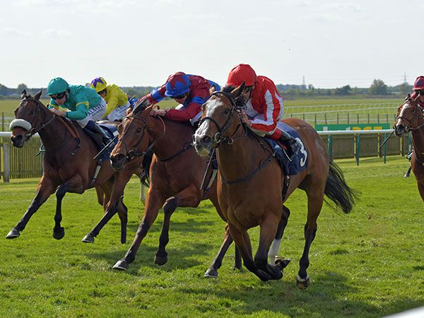 Daban winning the G3 Nell Gwyn Stakes