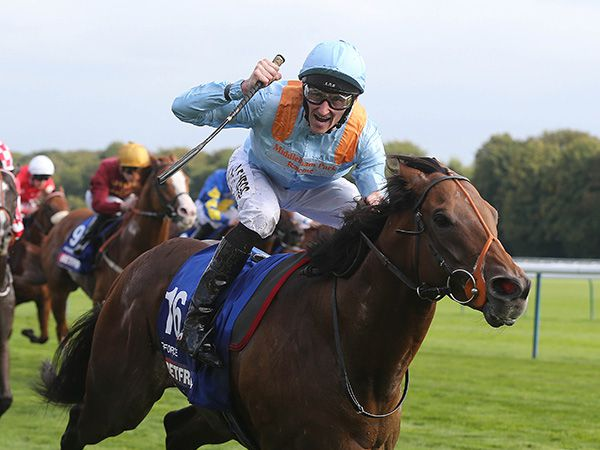 December Yearling Graduate G Force Winning the G1 Haydock Sprint Cup