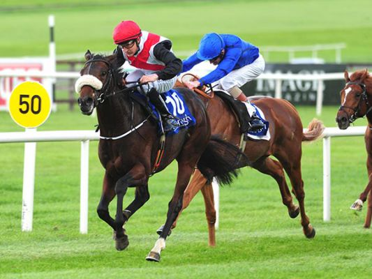 Grandee winning at The Curragh