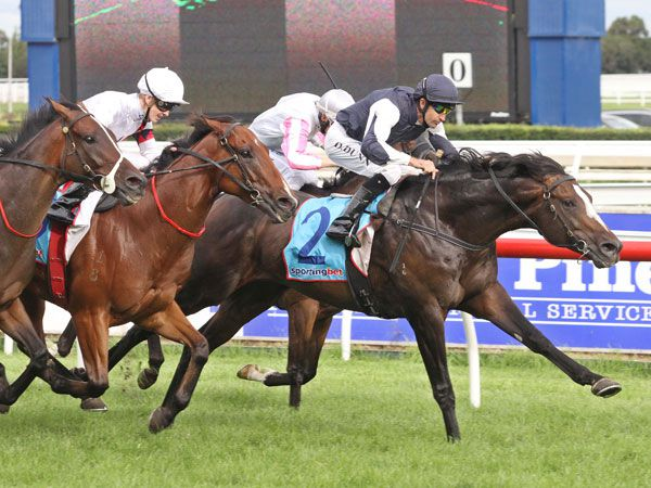 Jet Away winning the Group 3 Easter Cup