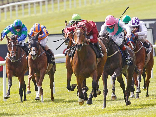 Just The Judge winning the Irish 1,000 Guineas