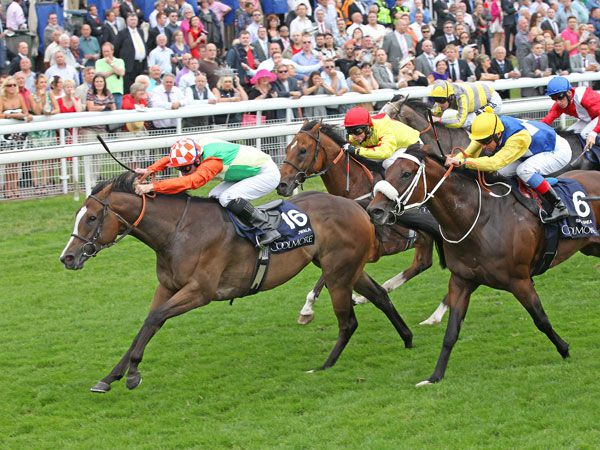 Jwala Winning the G1 Nunthorpe Stakes