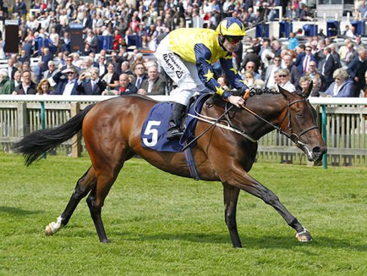 Kilmah winning at Newmarket