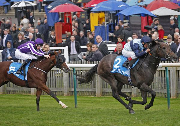 Johann Strauss chasing home Kingston Hill in the G1 Racing Post Trophy