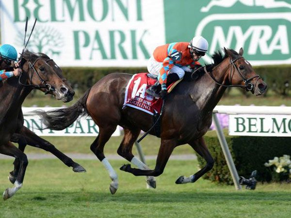 Laughing Winning the G1 Flower Bowl. (Picture courtesy of New York Racing Association)