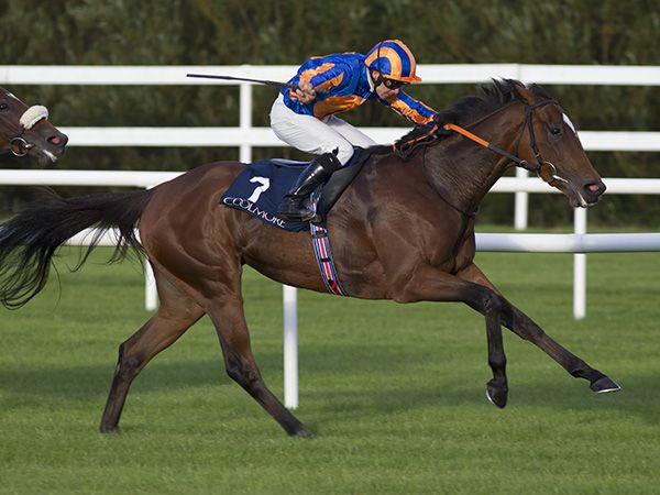 Legatissimo winning the Group 1 Matron Stakes (Copyright Patrick McCann)
