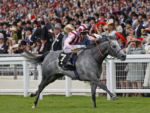 Lethal Force winning the G1 Diamond Jubilee Stakes (Copyright Trevor Jones)