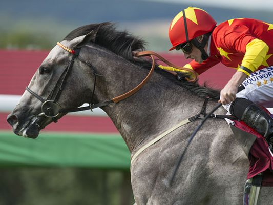Lockheed Winning the Qatar EBF Stallions Maiden Stakes