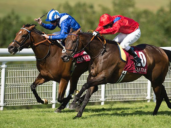 Muthmir winning the Group 2 King George Stakes