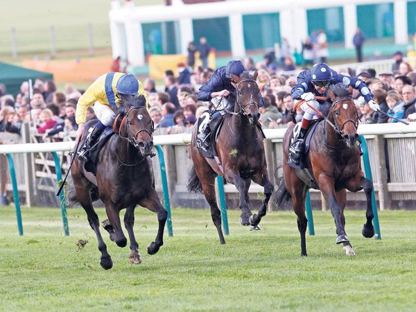 Moohaajim (left) in the G1 Middle Park Stakes