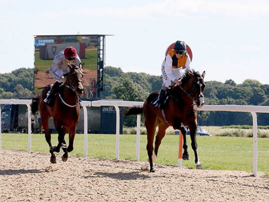 Mushaireb (Right) is Second Past the Post, but won in the Steward's Room