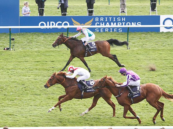 Night Of Thunder wins the 2000 Guineas