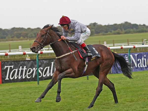 Osaila Winning the £300,000 Tattersalls Millions 2YO Fillies' Trophy