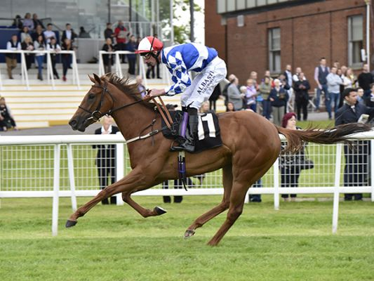 Poet's Princess winning at Newbury