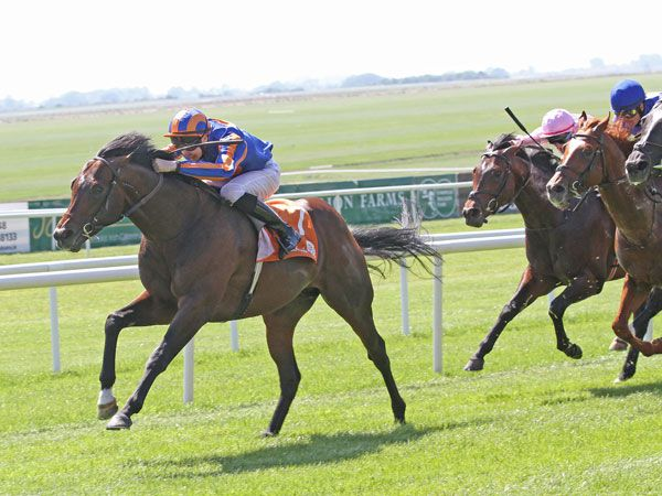 Tattersalls October 1 Graduate Power winning the 2012 Irish 2000 Guineas