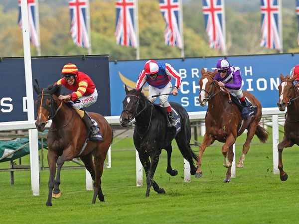 Seal Of Approval Beats Belle De Crecy at Ascot