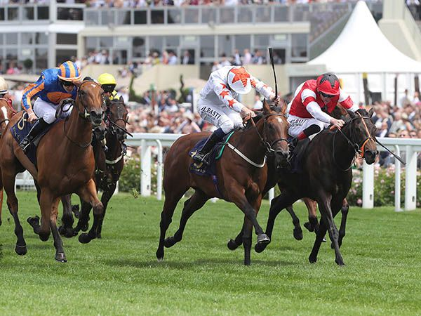 Signora Cabello Winning the G2 Queen Mary Stakes at Royal Ascot