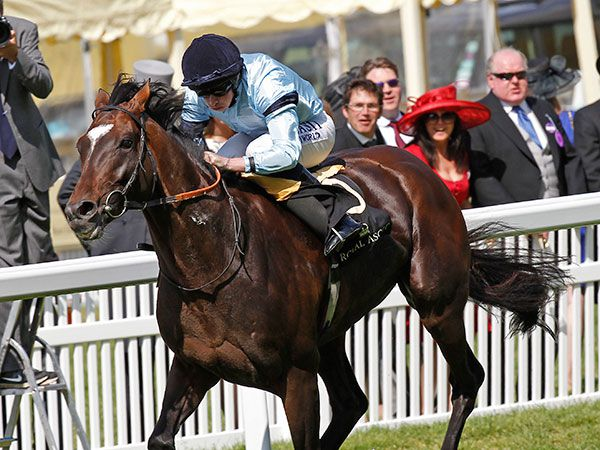 TELESCOPE winning the G2 Hardwicke Stakes