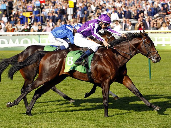 Ten Sovereigns Winning the G1 Middle Park Stakes