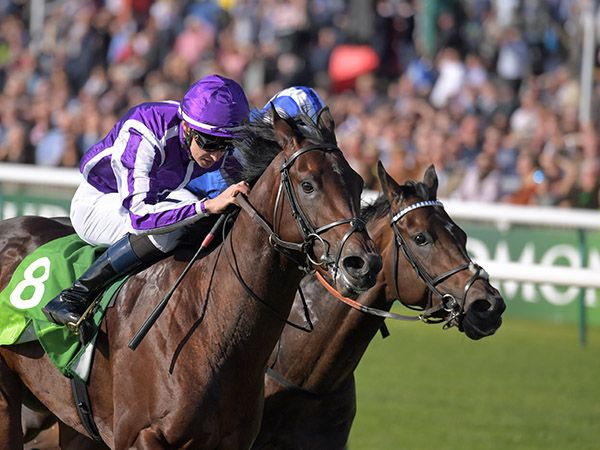 Group 1 Middle Park Stakes winner Ten Sovereigns, whose dam was purchased at the Tattersalls July Sale for 65,000 guineas