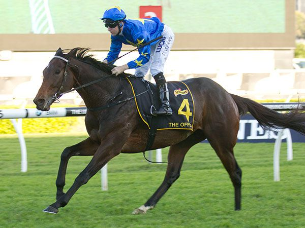 The Offer is clear of his rivals in the G1 Sydney Cup