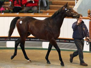 Lot 1156: Exceed And Excel (AUS) / Temple of Thebes (IRE)