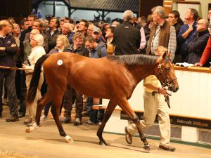 Lot 144: Galileo (IRE) / Shastye (IRE)