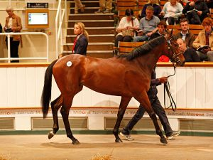 Lot 70: Canford Cliffs (IRE) x Khaizarana (GB)