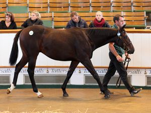 Lot 1438: Bated Breath (GB) / Sky Crystal (GER)