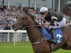 Hesslewood winning at York
