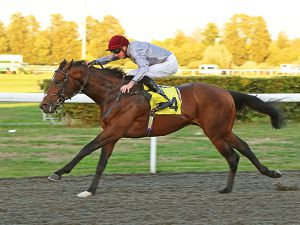 Almufti winning at Kempton