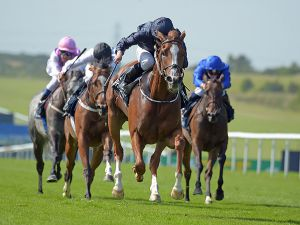 Alice Springs winning the Falmouth Stakes