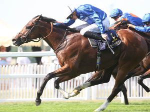 Barney Roy Winning the G1 St James's Palace Stakes