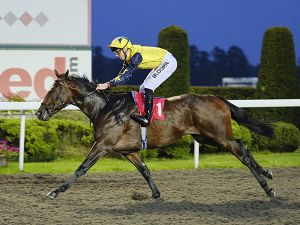 Barton Mills Winning at Kempton