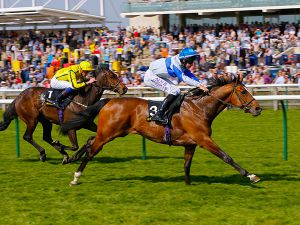 Bossy Guest Winning the £100,000 Tattersalls Millions 3YO Sprint
