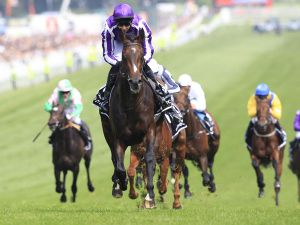Camelot winning The Derby