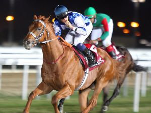 Dubday winning the G1 Qatar Derby in December