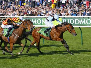 Group 1 Cheveley Park Stakes winning Fairyland whose dam was purchased at the Tattersalls July Sale for 32,000 guineas