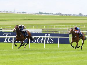 Fascinating Rock winning last year's Tattersalls Gold Cup