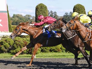 Fearless Warrior winning at Kempton