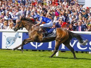 The dam of 2018 Oaks winner Forever Together was purchased at the Tattersalls February Sale for 20,000 guineas.
