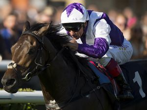 Glencadam Glory winning at Doncaster