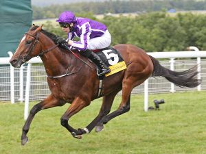 Book 1 yearling HIGHLAND REEL